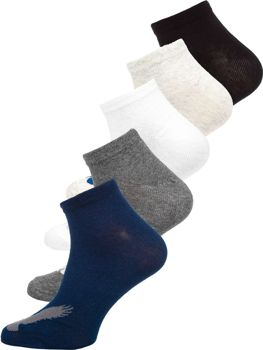 Носки мужские разноцветные Bolf X10171-5P 5 PACK