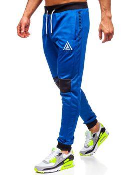 Сині чоловічі спортивні штани з принтом Bolf AM87